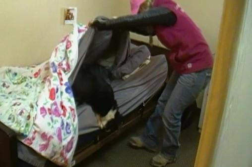 Bedbugging